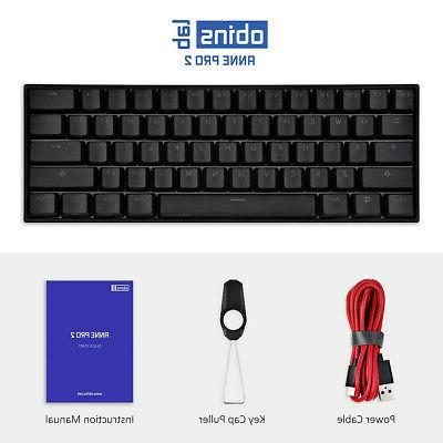 ANNE Gaming 60% Gateron Switches